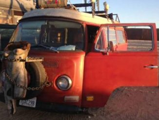 1971 Westfalia W Subaru Conversion For Rent In California